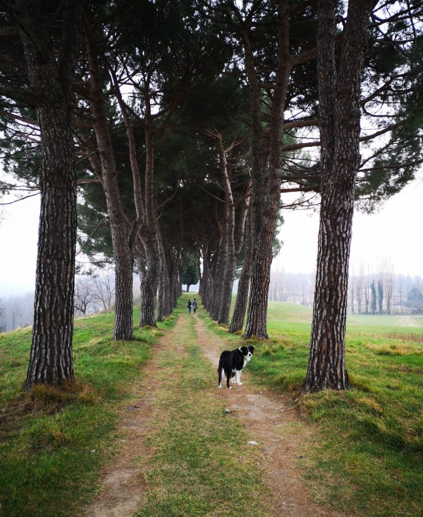Un angolo di Toscana nel cuore della Brianza